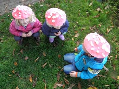 Kinderpaddenstoeltjes (Groene Helden)